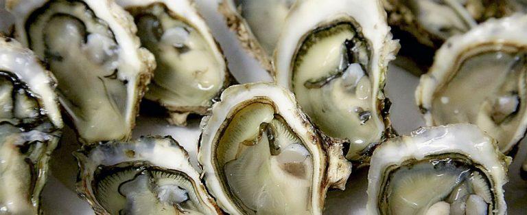 Pas op voor de Japanse oester