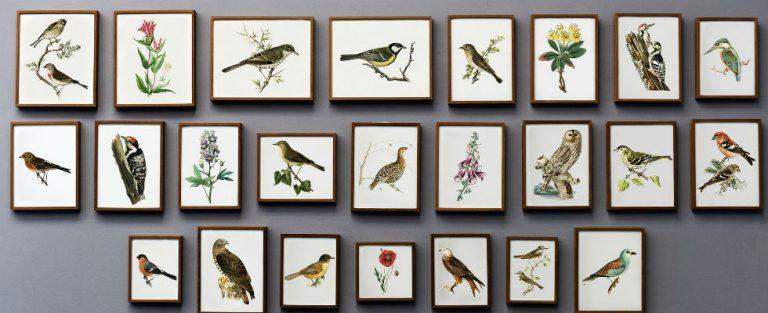 William Klein tentoonstelling