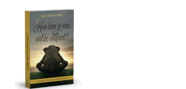Hoe tem je een wilde olifant? – Jan Chozen-Bays
