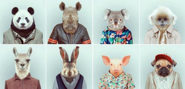 Dieren in een nieuw jasje
