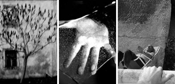 Laatste kans: Botmans alledaagse foto's