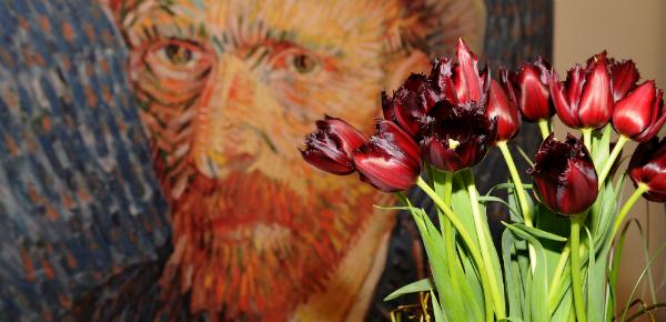 Van Gogh in bloei