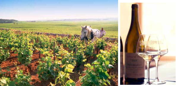 De Bourgogne als ideale tussenstop