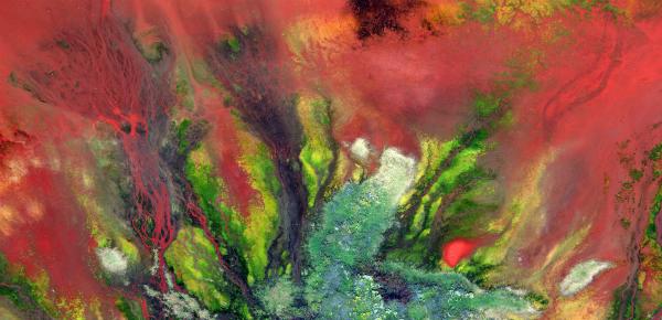 Milieuvervuiling als kunst