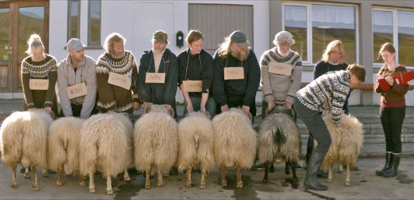 Twee koppige broers en hun schapen