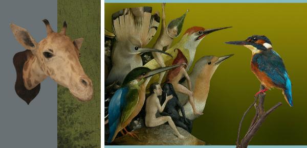 De dierentuin van Jeroen Bosch