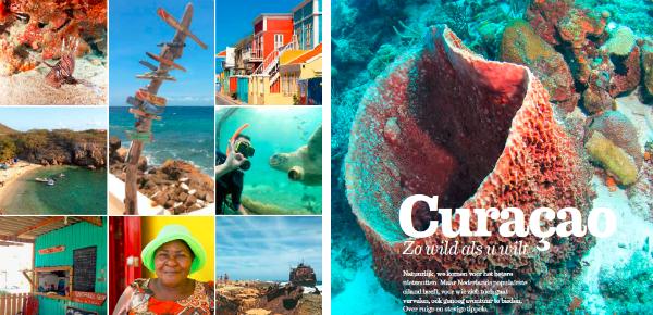 Curaçao niet voor niets Nederlands populairste eiland