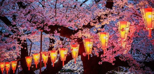 Japan in bloei