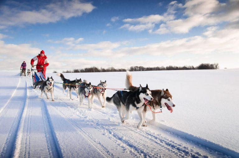 Droomvakantie naar Fins Lapland