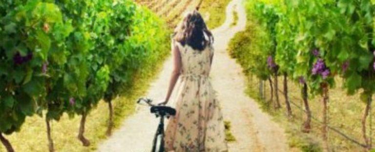 Geheimen en romantiek in Zuid-Frankrijk