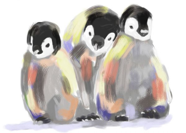 tekeningen dieren penguins