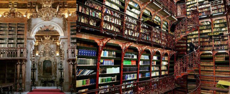 Zien! De mooiste bibliotheken op een rijtje