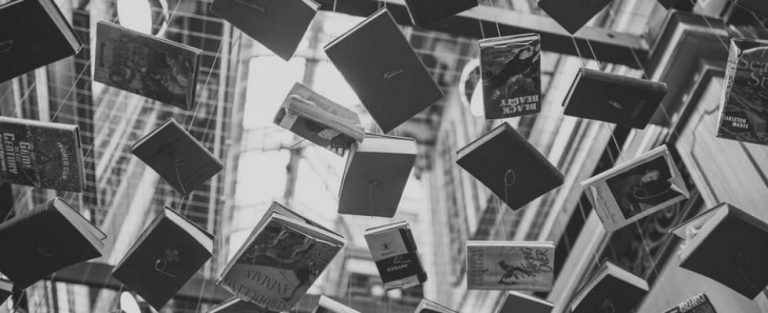 Vier de literatuur!