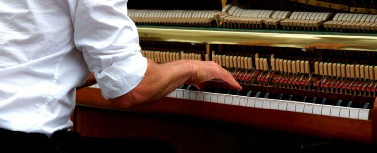 De techniek, de muzikaliteit, de gekte en de ernst