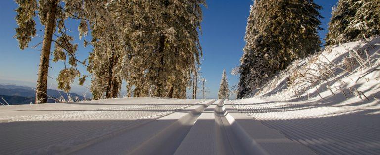 Een bijzondere skivakantie? Op naar Livigno!