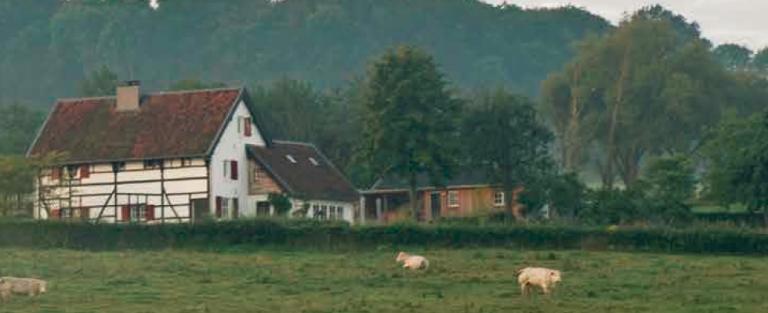 Actief onthaasten in Zuid-Limburg