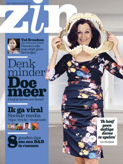 Cover Zin 11