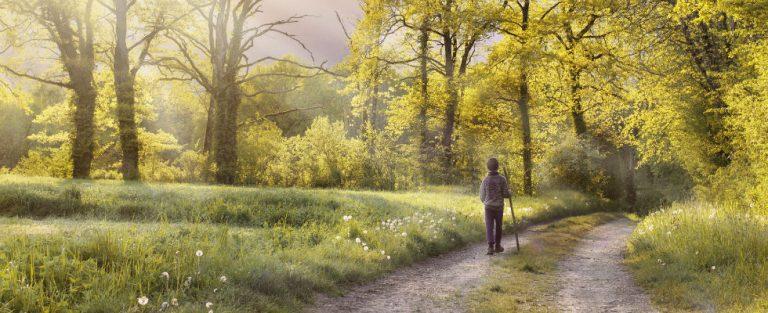 Wandelen is goed voor lijf en geest