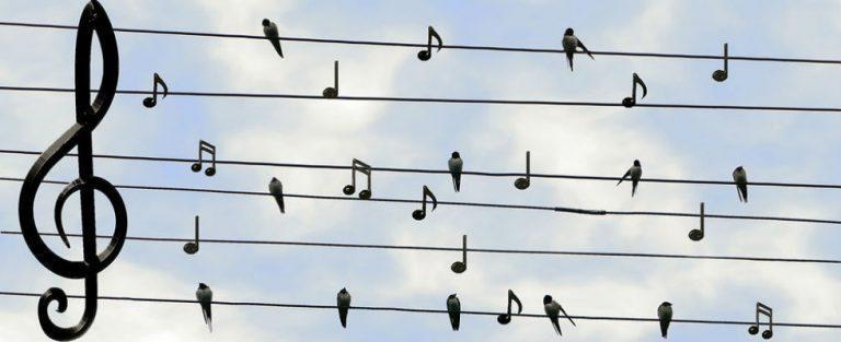 Luisteren of zelf zingen