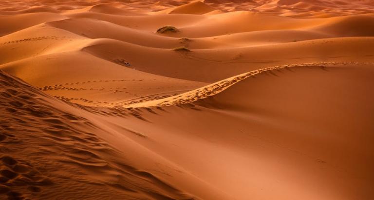 12-daagse Saffraanreis Marokko