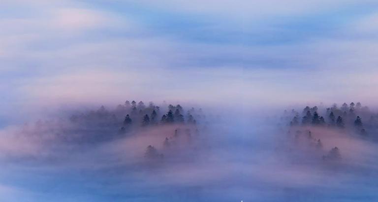 De mist in gaan