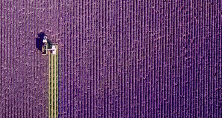 Dronografie: de mooiste luchtbeelden