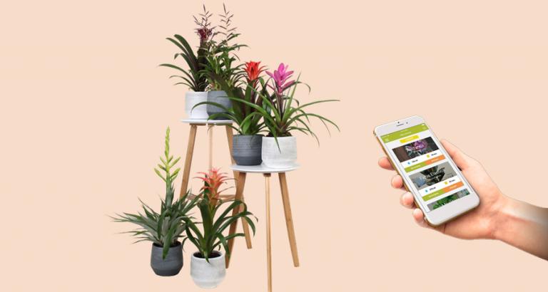 Met een app je planten water geven