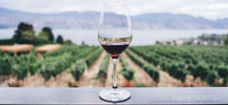 De wijnkaart, alsjeblieft