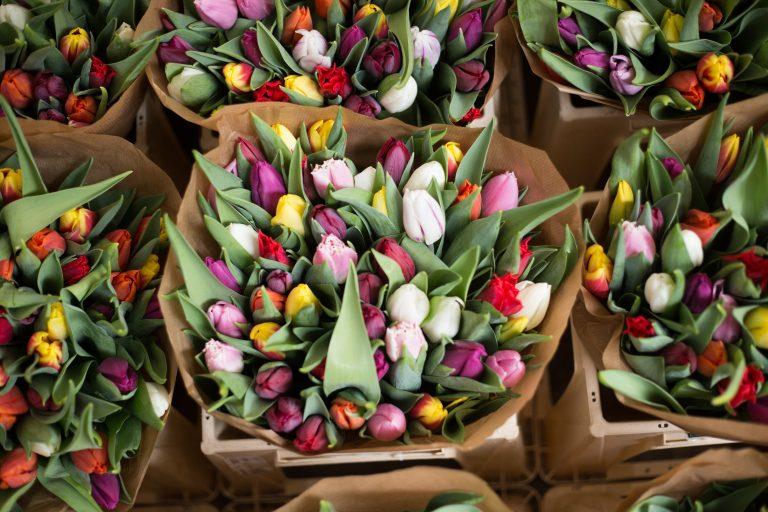 Deze hele maand zijn er tulpen ín Amsterdam