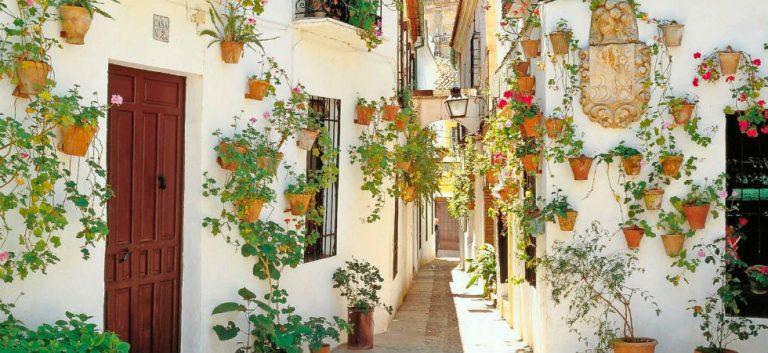 Highlights & verborgen schatten van Andalusië!