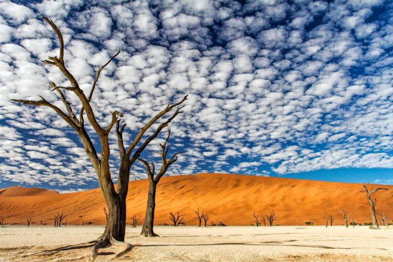 'Dit gebied is voor mij het mooiste landschap dat ik ooit heb gezien'