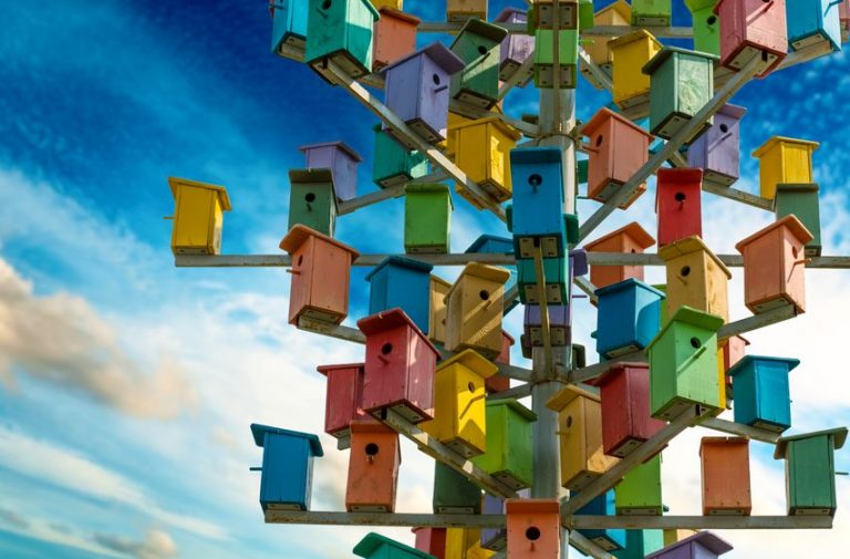 Meer vogels in de tuin? Regel nu al een nestkast!
