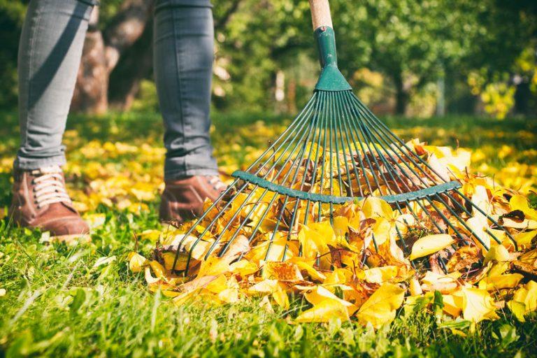 Is jouw tuin al winterklaar?