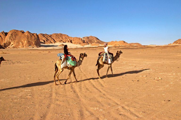 Reis op het schip van de woestijn