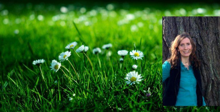 'De tuin biedt je altijd een nieuwe kans'