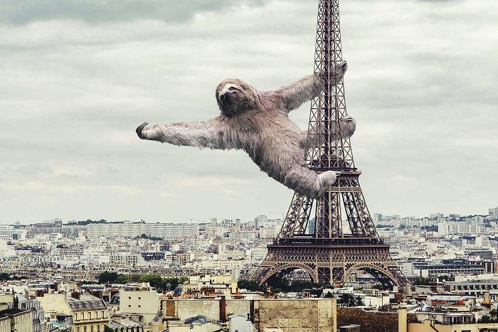 7 x een wereld met reusachtige dieren