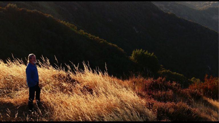 3 x prijswinnende natuurfilms in de bios