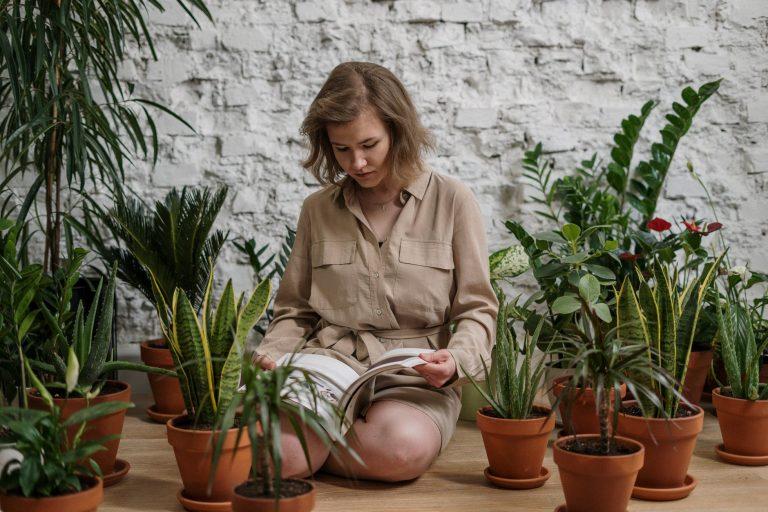 9 x binnenkijken bij plantenminners