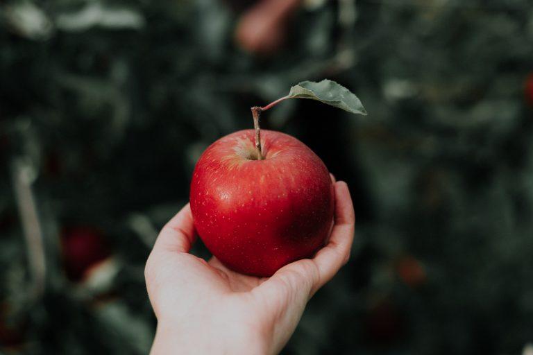 4 x knutselen met appels op 'Eet een appel dag'