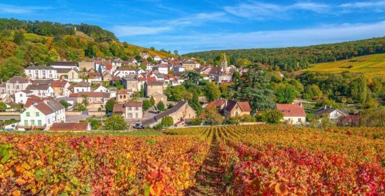 De herfst vier je in de Bourgogne