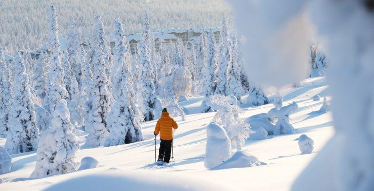 Geniet van de rust en ruimte in Fins Lapland in de winter