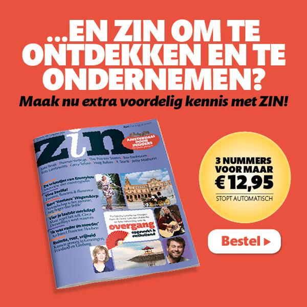 Banner ZIN mediacampagne