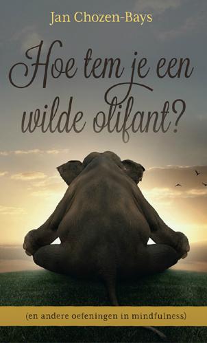 25-Toptitels_Hoe-tem-je-een-wilde-olifant_500x700