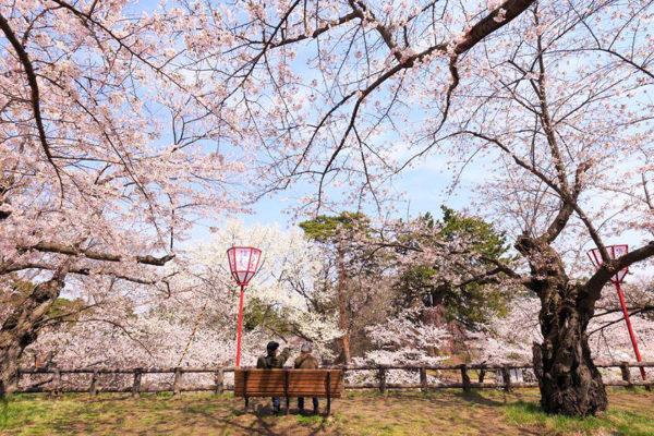 Lente in Japan bloesem 8